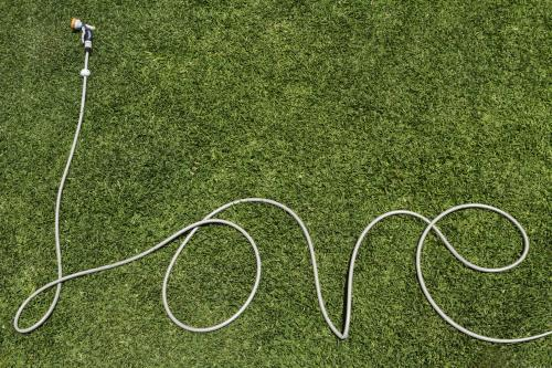 Garden hose shaped to form the word love on a green lawn