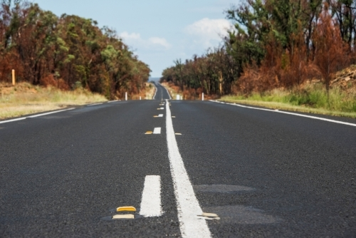 Low angle along an Australian road after a bushfire
