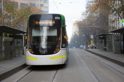 Melbourne Tram on a Foggy Morning