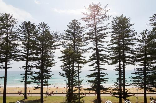 View of Manly surf beach through the pine trees along the beachfront