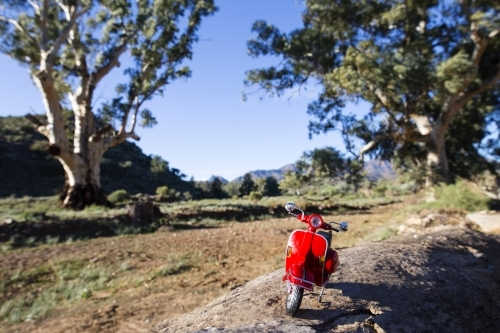 Red scooter in front of gum trees and ranges