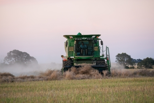 A large harvester operating in a paddock at twilight