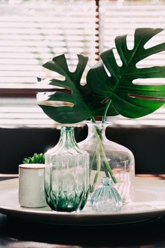 Monstera palm leaves in a vase on a dining table with vintage objects