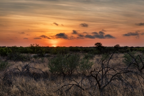 Moody sunrise in rural bush setting in Western Australia