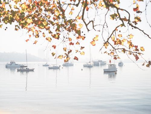 Moored boats on calm water with autumn leaves in foreground