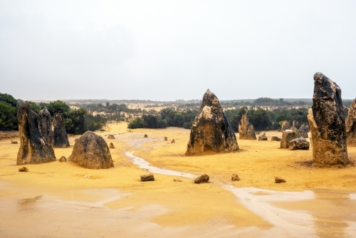 Multiple rock formations along a water covered pathway at the Pinnacles