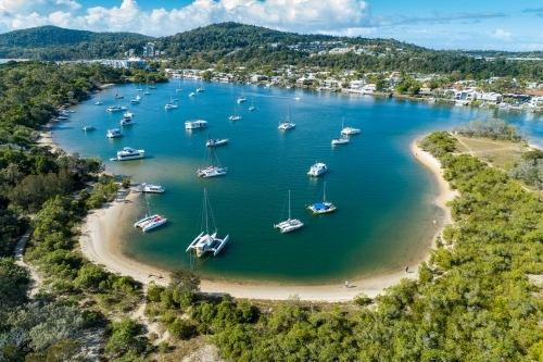 Numerous boats anchored on Noosa River.