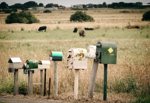 Country style letter boxes in a row beside rural road
