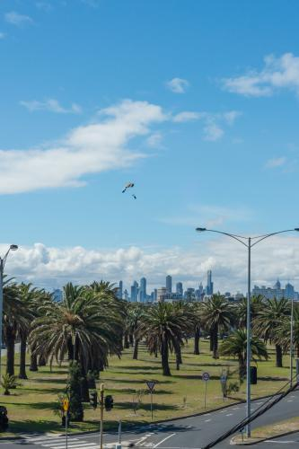 Parachute landing with Melbourne city in the background