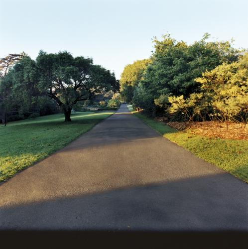 Paved pathways through parkland with light and shadow