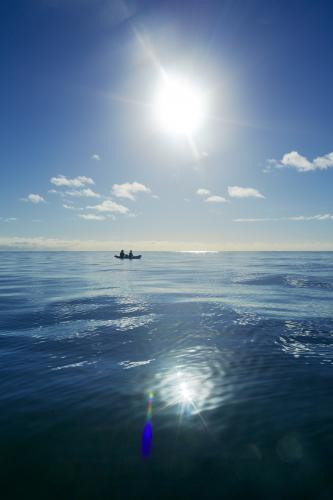 Two people paddle a kayak on a blue ocean
