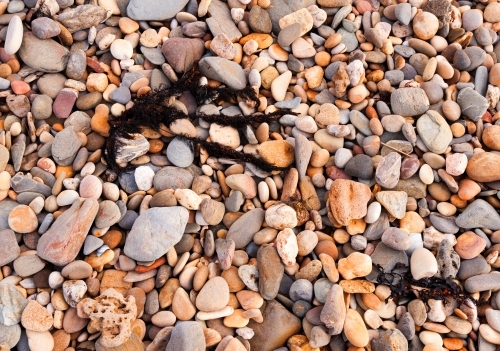 Pebbles and rocks of different sizes on the beach with black seaweed
