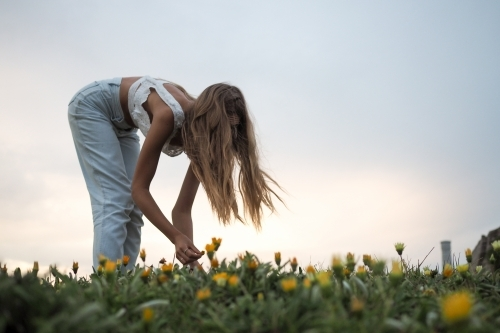 Picking the Wildflowers