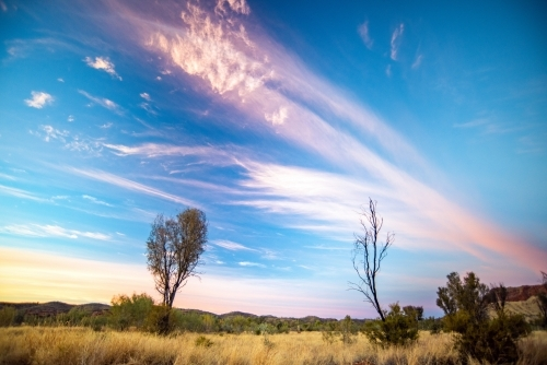 Pink vibrant colors of the sky during dawn in the Australian outback