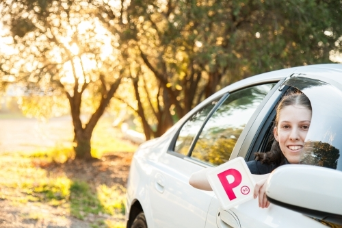 Teenager holding provisional P1 plate out car window