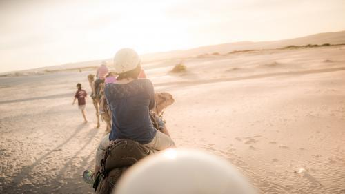 Mixed race family ride camels on beach at sunset