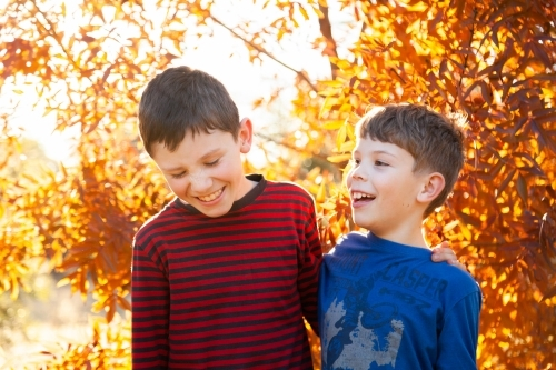 Portrait of young brothers laughing together in autumn