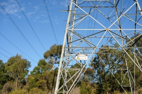 Power lines and power line tower in bushland