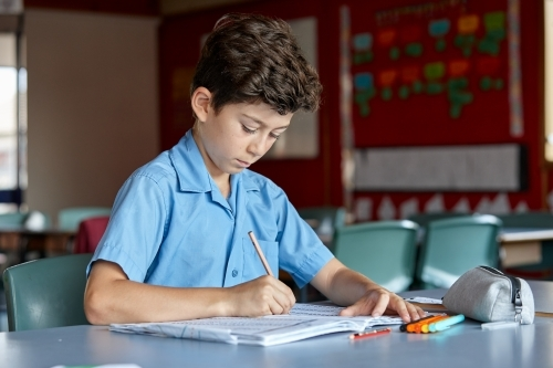 Primary school student in classroom working on homework