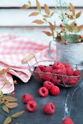 Wire basket of raspberries