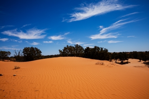 red desert sand under blue sky