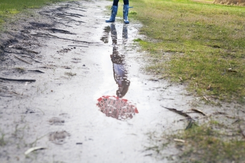 Reflection in rain puddle