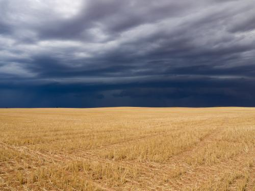 Dark storm clouds over a yellow harvested wheat field