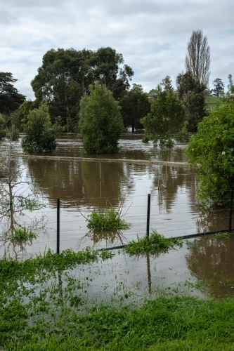 Rising flood waters in residential area