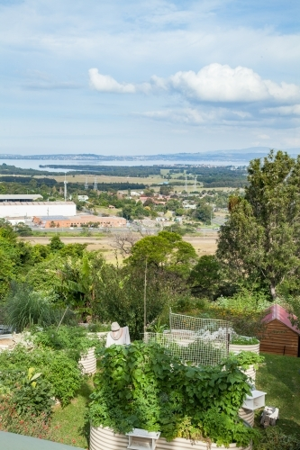 Looking down on vegetable garden and Lake Illawarra in the distance