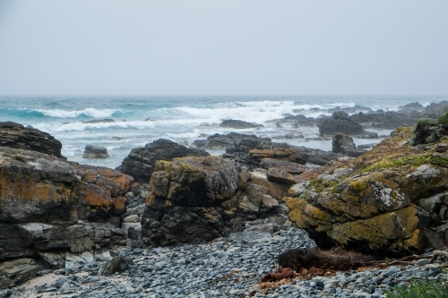 Rough sea and rocky coast