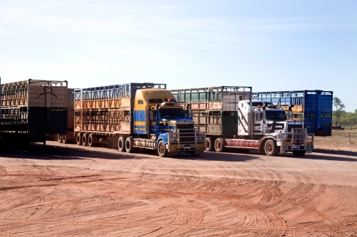 Row of large trucks parked on red dirt