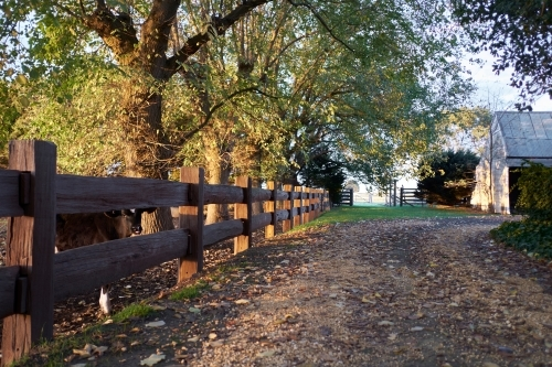 Rural homestead with post and rail fence