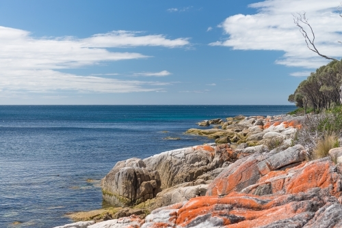 Seaside rock colours of Bay of Fires, Tasmania
