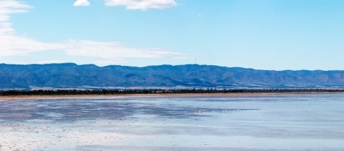 shallow bay with Flinders Ranges in background