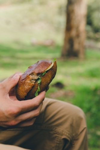 Side view of a man holding bread roll sandwich, sitting in a green park
