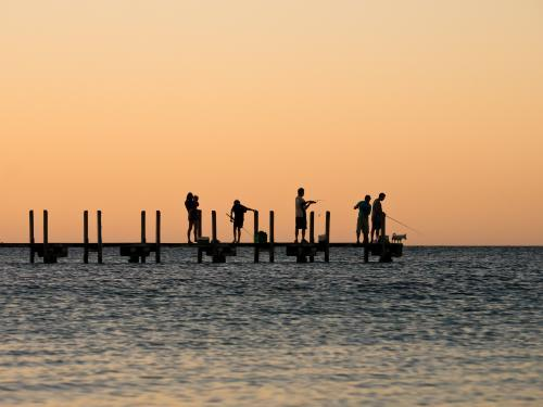 Silhouette of people fishing off a jetty at dusk