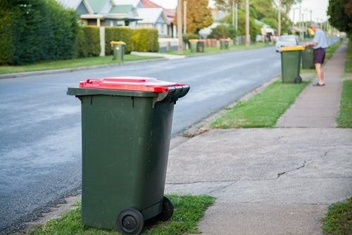 Council rubbish bins awaiting collection along town road
