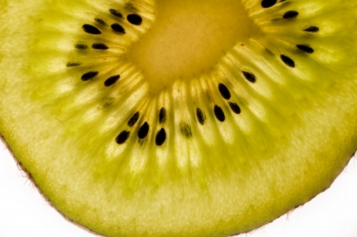sliced kiwi fruit on white background