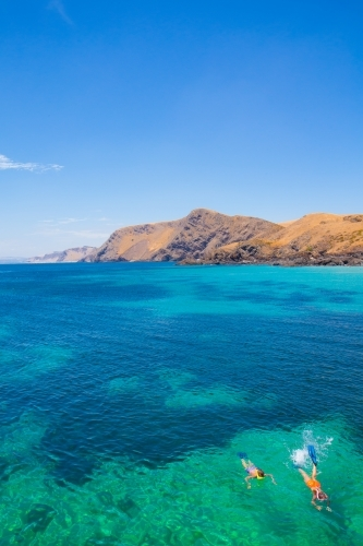 Snorkelling in paradise at Second Valley, Fleurieu Peninsula, South Australia