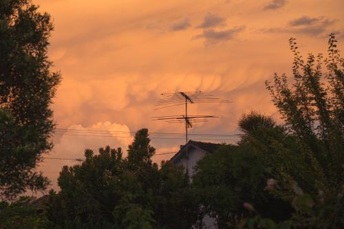 Soft clouds at sunset behind a house, antenna and trees