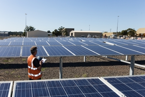 Wide angle of an employee taking notes at a Solar Panel plant