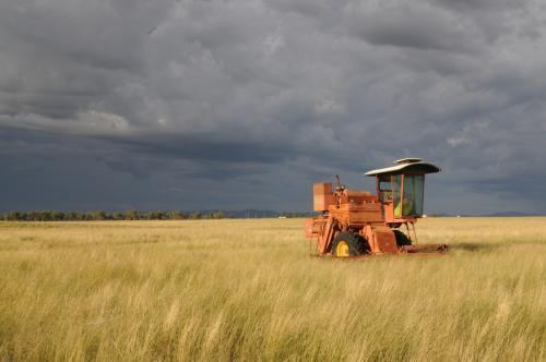 Harvester in a paddock before a storm