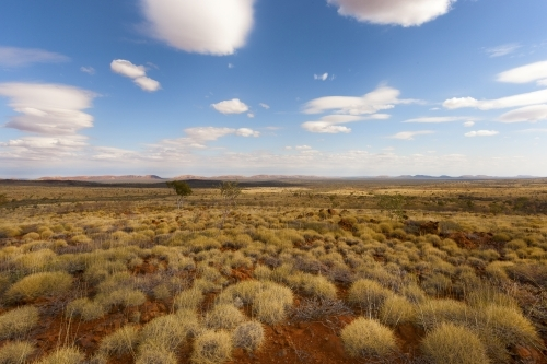 Spinifex country and blue sky with clouds