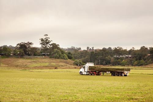 Square lucerne hay bales stacked on the back of a truck in a paddock