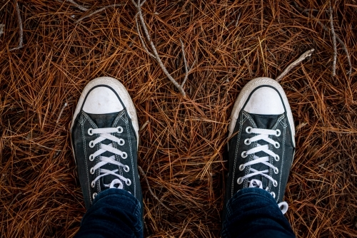 Standing in Old Sneakers on a Pile of Pine Needles
