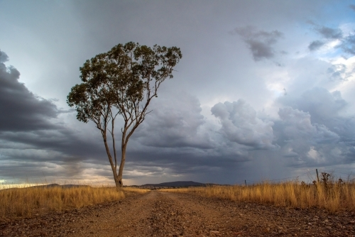 Storm coming along Australian country dirt road.