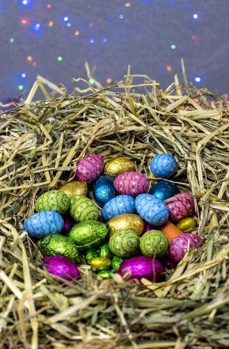 Straw nest filled with colourful easter eggs with coloured lights in background