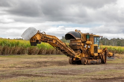 Sugar Cane Harvester alongside plantation