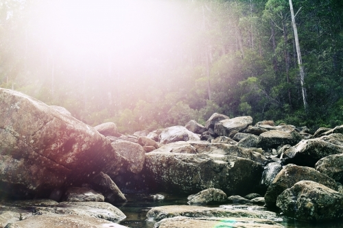 Sun flare over a rocky creek bed