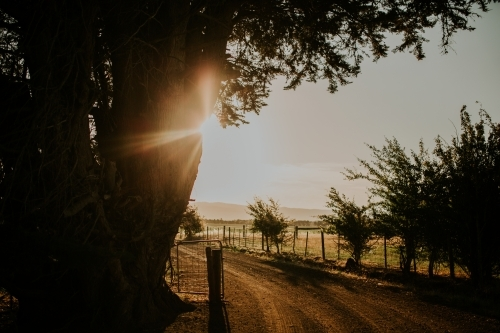 Sunset behind farm gate